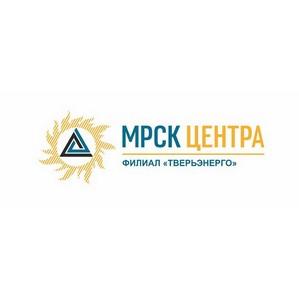 Жители Тверской области осуждены за хищение энергооборудования Тверьэнерго