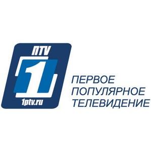 Общественный транспорт Петербурга дал старт предвыборной информационной кампании