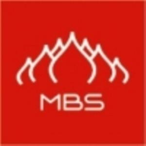 MBS проведет стажировку по производственной логистике в Германии