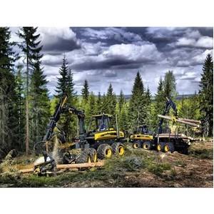 Построение комплексной системы безопасности на лесообрабатывающем производстве