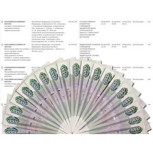 Самые денежные сферы в электронных закупках