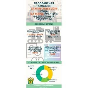 Ярославская таможня подвела итоги внешней торговли за первое полугодие 2019 года