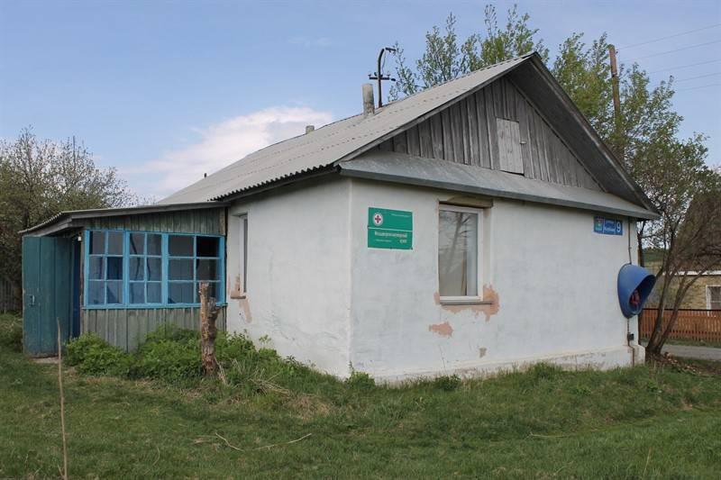 Эксперты ОНФ выявили проблемы в работе фельдшерско-акушерских пунктов Челябинской области
