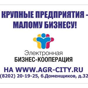 В помощь предпринимателям информационный ресурс в Череповце «Электронная бизнес-кооперация»