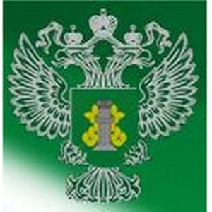 За 1 квартал специалистами Россельхознадзора оформлено 1369 партий подконтрольных грузов