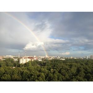 ОНФ в Петербурге взял на контроль создание четырех особо охраняемых природных территорий