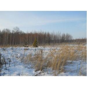 Об итогах работы Томского Россельхознадзора в области земельного надзора за декабрь 2015 года