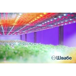 «Швабе» создал новые светильники с уникальным спектральным составом для агропромышленности