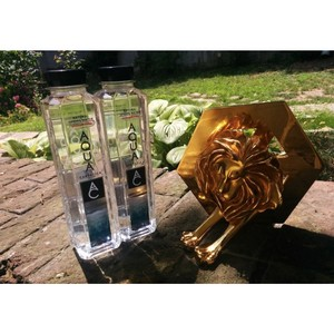 На Каннском международном фестивале креатива «золотым львом» наградили Aqua Carpatica