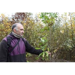јктивисты ќЌ' в ёгре инициировали обсуждение судьбы ботанического сада в —ургуте