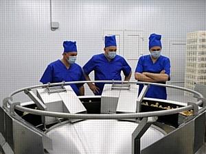 При поддержке Сбербанка на Ставрополье запущен инкубатор для разведения индейки
