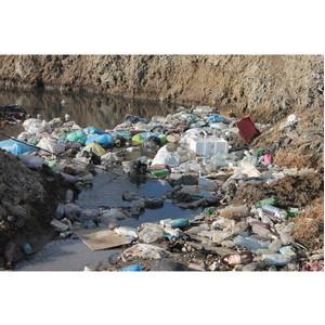ОНФ в Амурской области продолжает работу по проблемам экологии