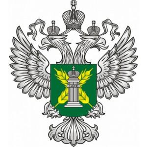 О выявлении нарушений при поставке более 1000 тонн продукции животноводства в Московский регион