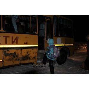 Активисты ОНФ проверили безопасность школьных маршрутов в Саракташском районе Оренбургской области
