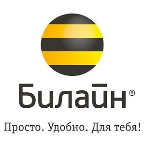 Топ-менеджмент «Билайн» на Урале полностью обновлён
