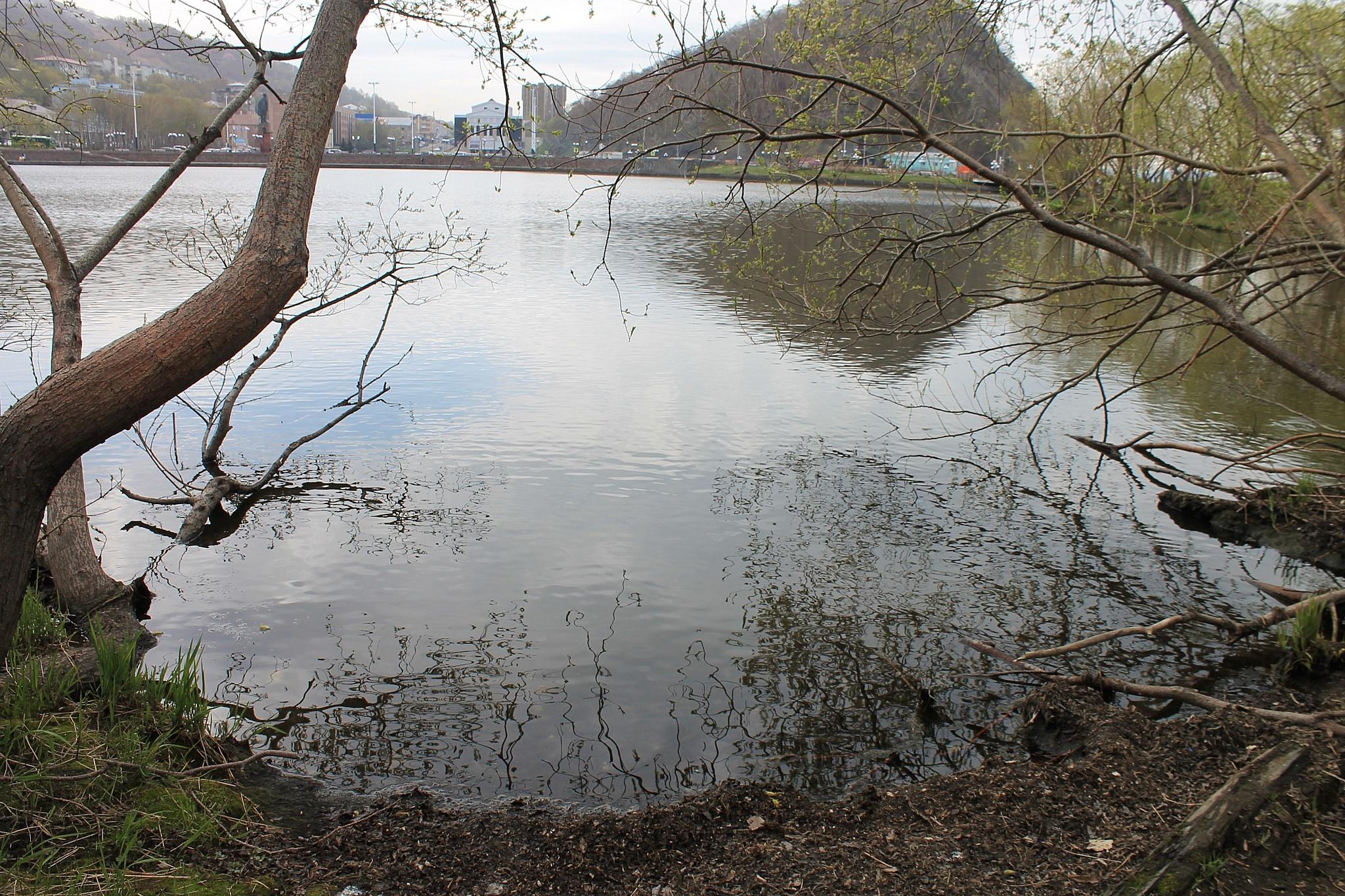 Активисты ОНФ на Камчатке призвали власти подключиться к спасению озера Култучного
