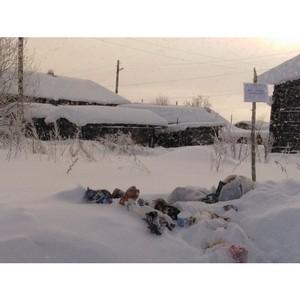 Активисты ОНФ в Коми выявили проблему недостаточного количества контейнеров для сбора отходов