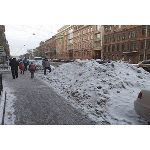 Активисты ОНФ в Петербурге проверили качество уборки городских улиц от снега