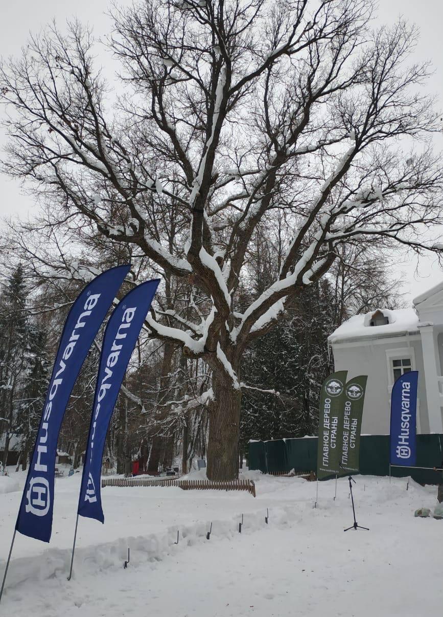 Husqvarna поддержала беговой марафон в рамках международного конкурса «Европейское дерево года»