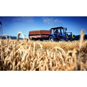 ОНФ проведет мониторинг доступности грантов для начинающих фермеров