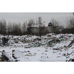 ОНФ в Петербурге обратился в прокуратуру по факту складирования отходов вблизи жилых домов