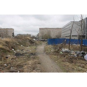 ОНФ призвали власти Кировского и Фрунзенского районов Петербурга благоустроить территориях