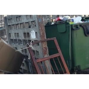 Активисты ОНФ призвали власти Петрозаводска навести порядок на 12 контейнерных площадках