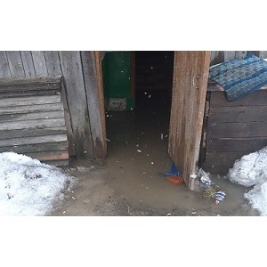 ОНФ в Югре призвал власти поселка Пионерский ликвидировать причину подтопления домов