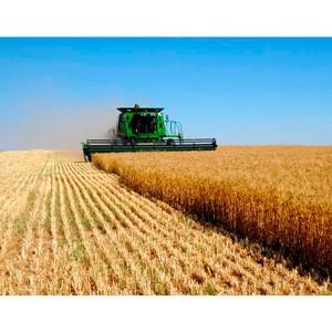 Половина розничного кредитного портфеля Россельхозбанка приходится на жителей сельской местности