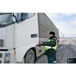 В Новосибирскую область не пустили 19 тонн «санкционных» яблок