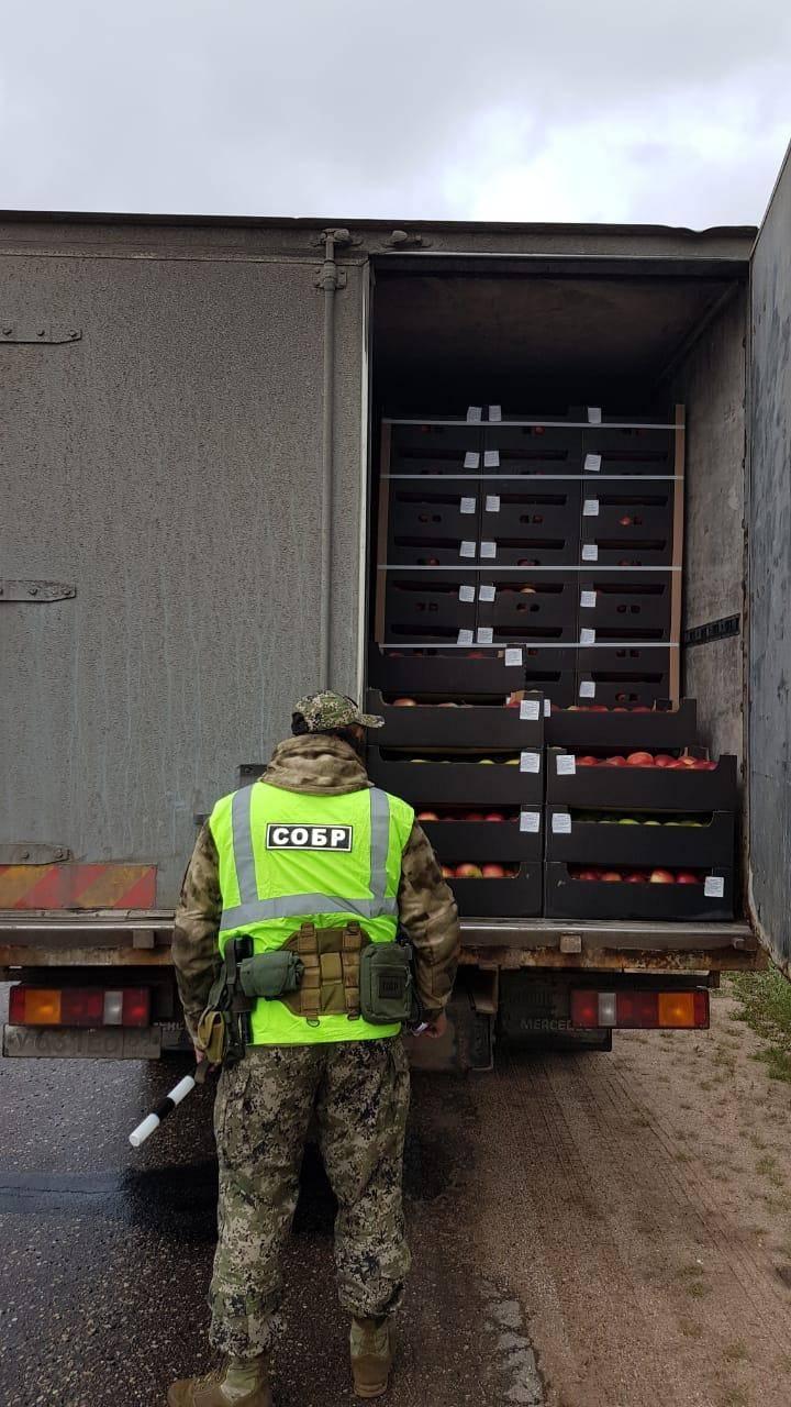 В канун Дня Победы смоленские таможенники  задержали  польские и молдавские яблоки