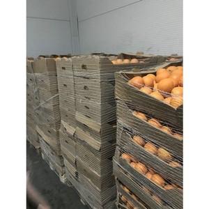 Краснодарские таможенники выявили на оптово-розничном рынке 5 тонн санкционных апельсинов