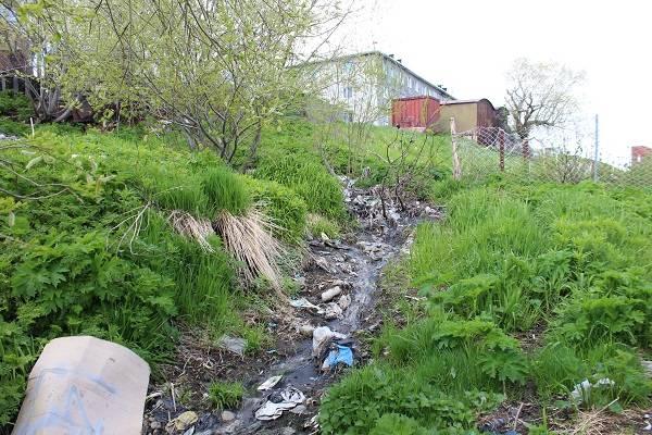 Активисты ОНФ призвали власти Петропавловска оборудовать площадку для сбора мусора в Долиновке