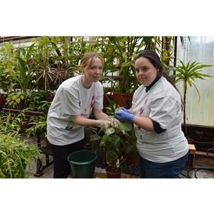 Экоакция в Ботаническом саду Пермского университета развивает практики инклюзивного волонтерства