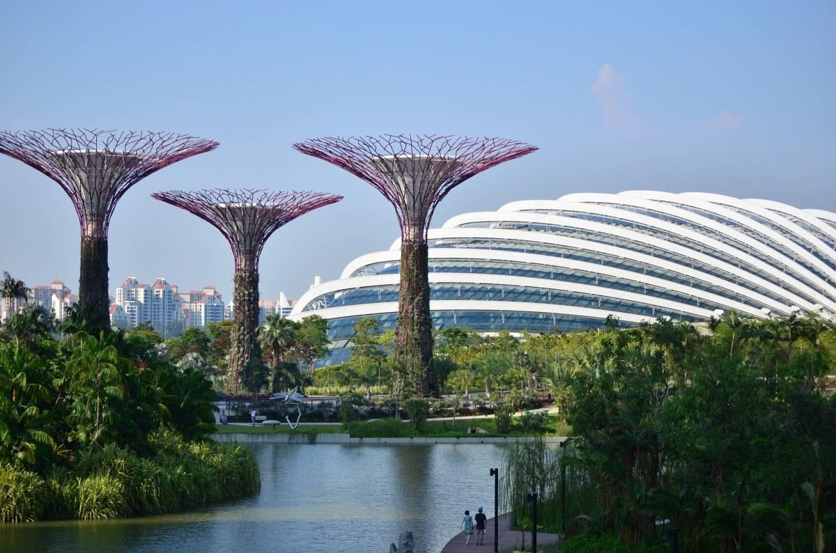 Сингапур: «Академия Юнисоо» в «городе льва»