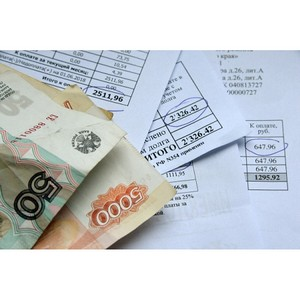 ОНФ в Приамурье помог жителям п. Ивановский исключить плату за несуществующие услуги по вывозу ТКО