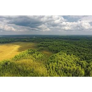 Будуев: Правовое регулирование лесов на землях сельхозназначения обеспечит их дополнительную защиту от пожаров