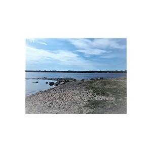ОНФ в Карелии проверил состояние берега Онежского озера перед стартом экологической акции