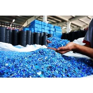 Гутенев: Минприроды должно подготовить программу по производству, сбору и переработке биоразлагаемого пластика