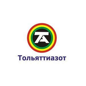 Школа – ТГУ – Тольяттиазот