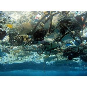 Большое мусорное пятно уменьшили на 40 тонн пластикового мусора