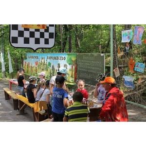 ОНФ в Приамурье призвал руководство детских лагерей устранить недочеты в организации отдыха