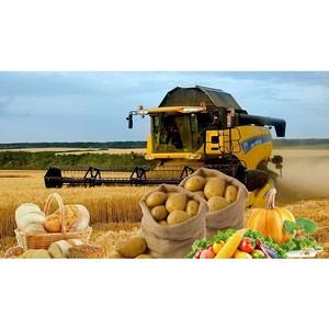 Агропромышленный комплекс демонстрирует высокий экспортный потенциал