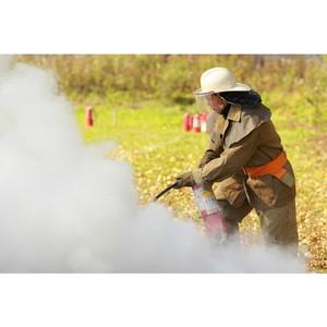 Цунаева: предложения по охране лесов от пожаров будем готовить, опираясь на опыт активистов в регионах