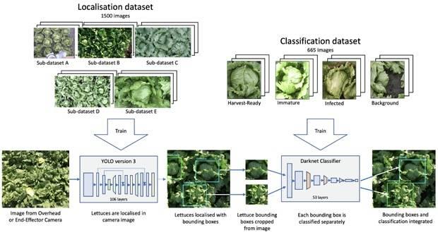 Схема работы алгоритмов и информация о датасетах.
