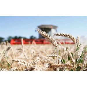 Россельхозбанк и Минсельхоз поддержат конкурентоспособность аграриев