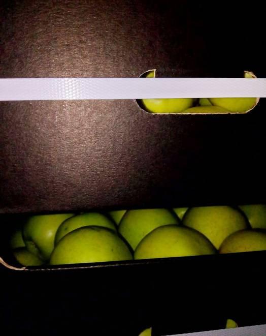 Яблоки под стекловатой
