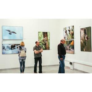 В Тюмени стартовал Международный фотоконкурс World Eco Photo 2019