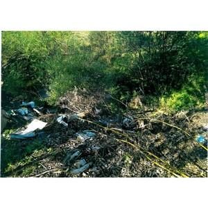 ОНФ в Мордовии призывает население и власти Чамзински очистить берега реки Нуя от мусора