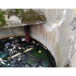 Камчатская «Молодежка ОНФ» сообщила в Росприроднадзор о загрязнении Охотского моря